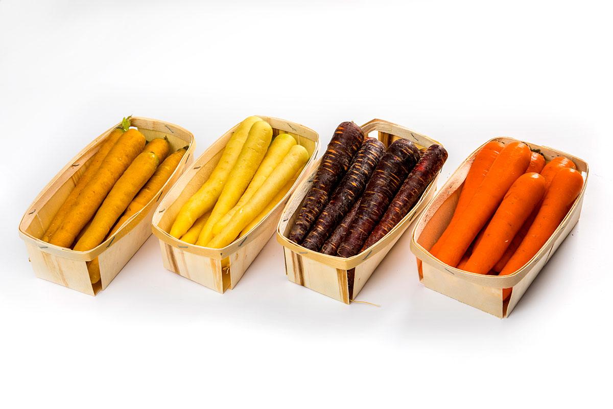 Choisir les variétés de carottes